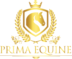 Prima Equine - Equestrian Supplies, Saddles, etc