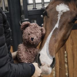 Kentucky Horsewear Relax Horse Toy Bear