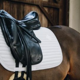Kentucky Horsewear Saddle Pad Pearls Show Dressage White