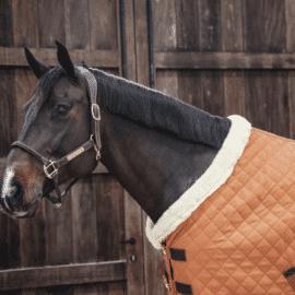 Kentucky Horsewear Autumn Orange Show Rug